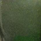 Moosgrün Glanz
